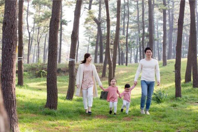 北海道伊達市有珠町の有珠善光寺自然公園 噴火が造形した石庭のある原生林