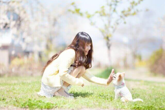北海道札幌市中央区界川にある札幌市を展望できる旭川記念公園を紹介