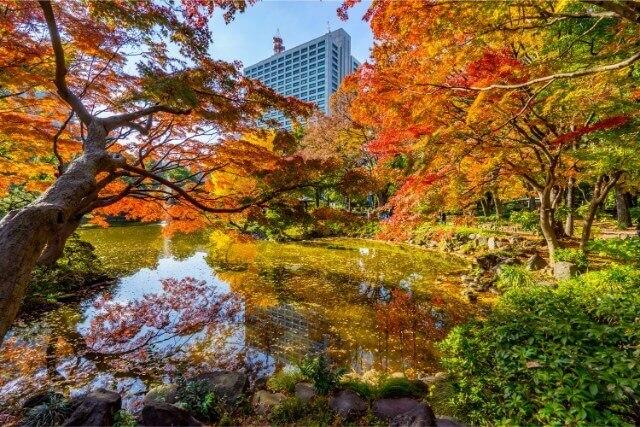 北海道札幌市北区の百合が原記念公園の魅力!周遊列車が走るフラワーパーク