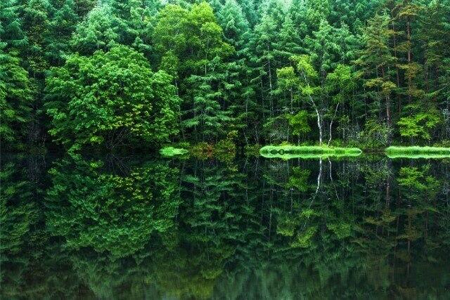 北海道の鳥沼公園、台風で青い池になった!ボートに乗れる池「鳥沼公園」!